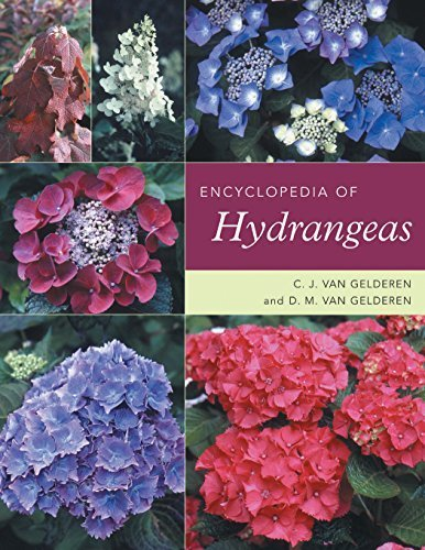 Encyclopedia of Hydrangeas by C. J. van Gelderen (2004-08-01)